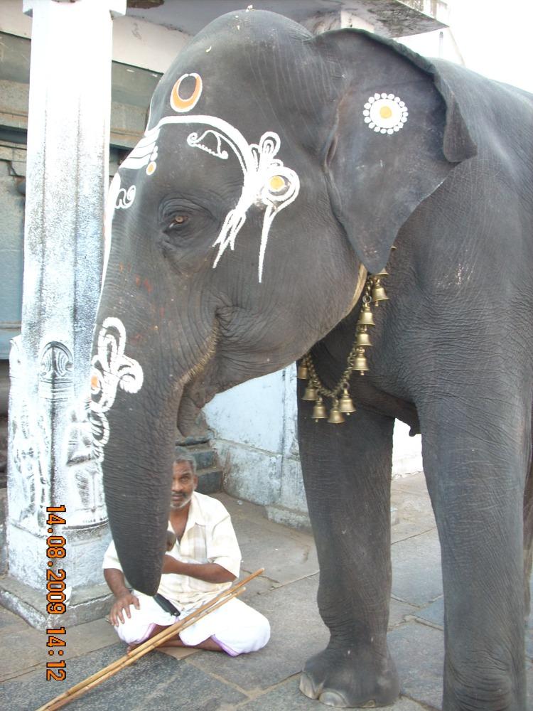 Kanchipuram (2/6)