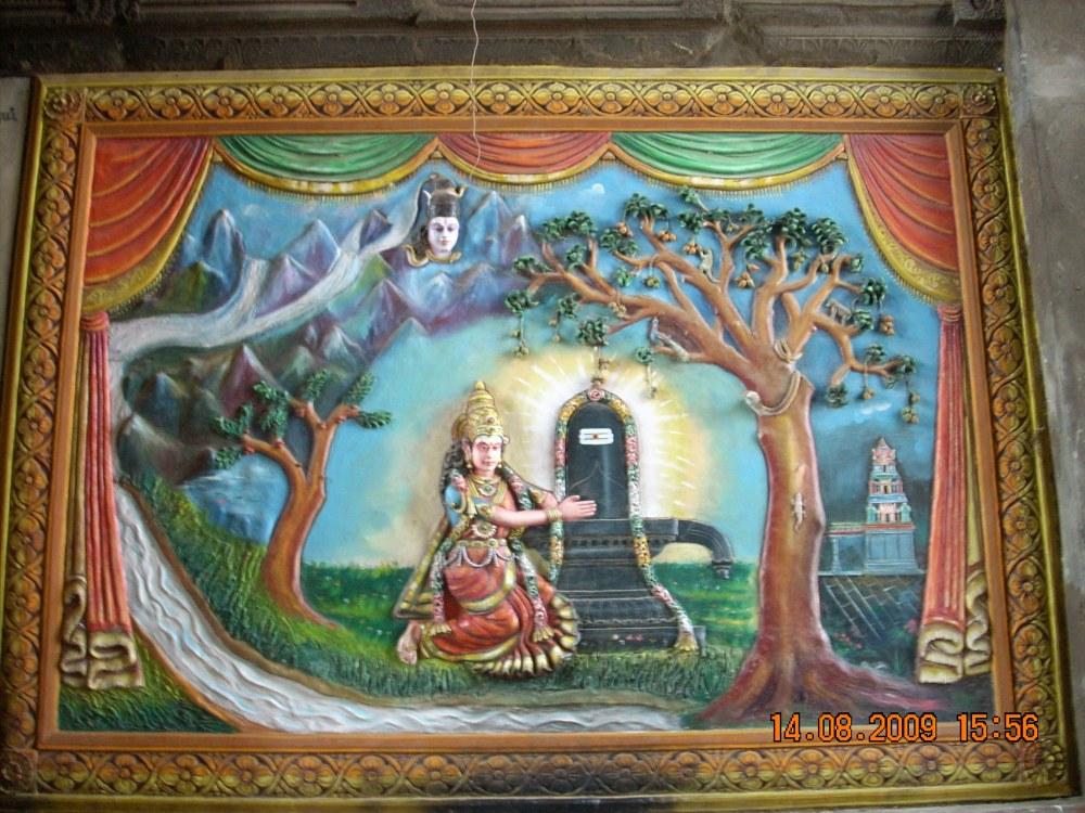 Kanchipuram (6/6)