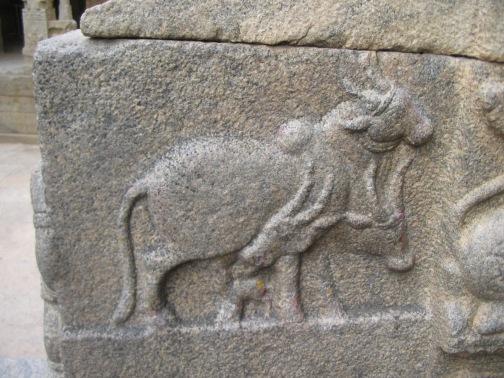 3-headed bull